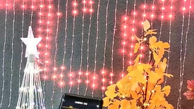 APP CONTROLLED LED CURTAIN NET PROGRAMMED