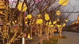 LED String Decor for Trees