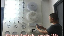 ANPU Smart Home-Smart Switch