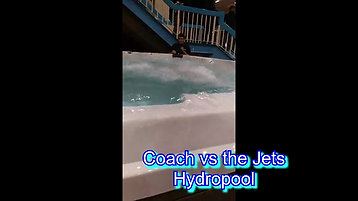 Coach vs jets