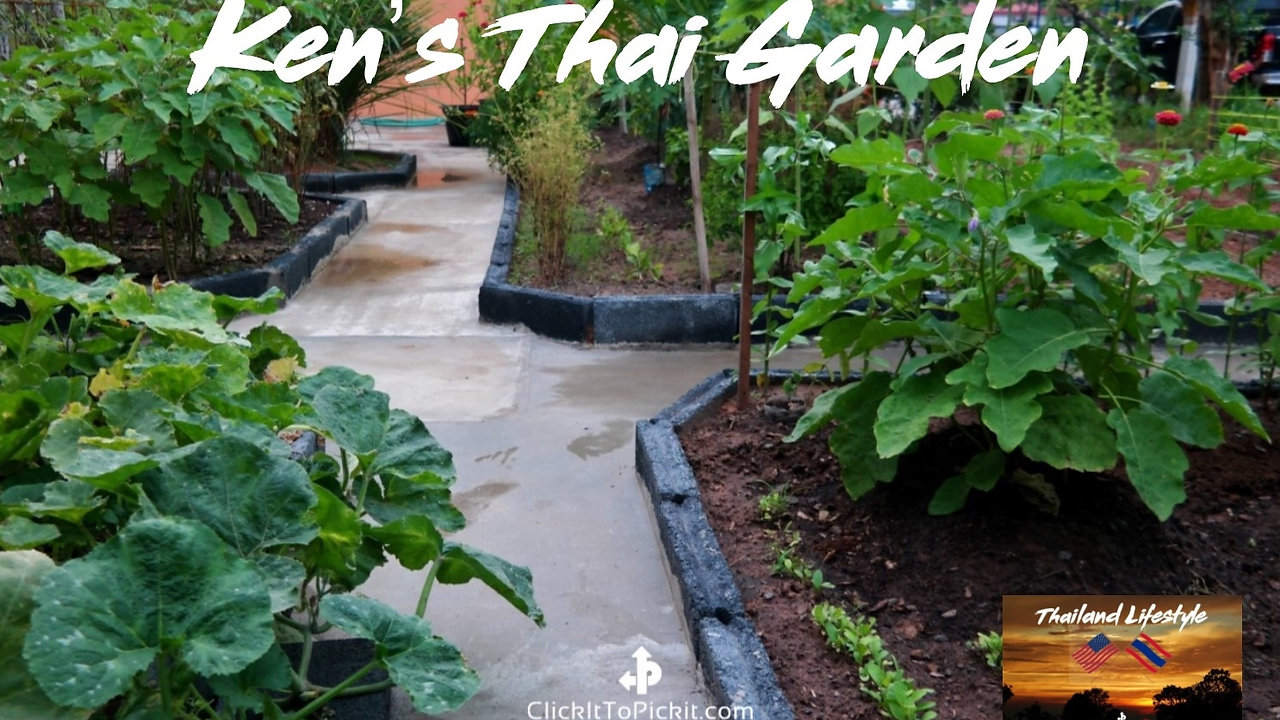 """Ken's """"Thai Garden"""""""