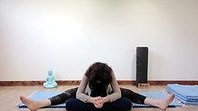 Yin Yoga - Purposeful Movements