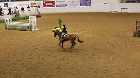 Rider 285