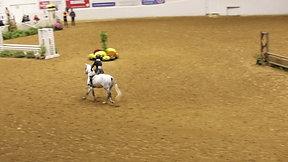Rider 230