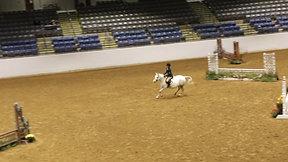 Rider 273