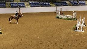 Rider 178