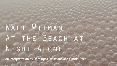 At the beach at night alone by Walt Witman