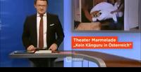 Känguru ORF 2018