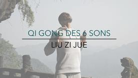 QIGONG DES 6 SONS (complet)