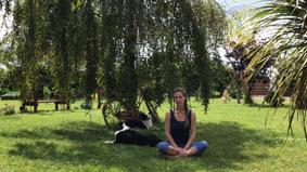 Sun Salutations with Sanskrit Count - 15 mins
