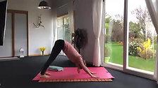 Fundamental Flow with Meditation - 45 mins