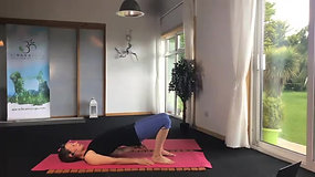 Inversions for Beginners - 30 mins