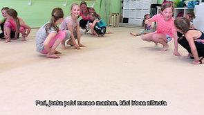 Leikki-video 8 Ankkatappelu VALMIS