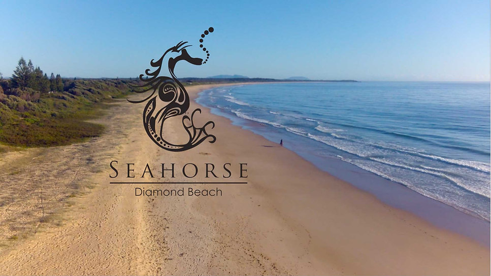 Sea Horse Diamond Beach - horse & dog friendly