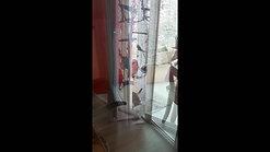 Wingcat la chatière pour baie vitrée