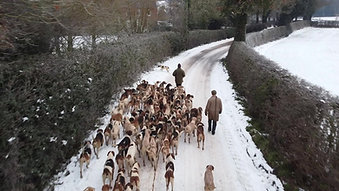 Ludlow Kennel Visit, in the snow...