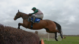 Kimblewick Point to Point, March 2021