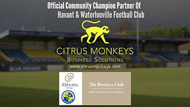 Citrus Monkeys Hawks Business Club Abbotts Group short Vid1