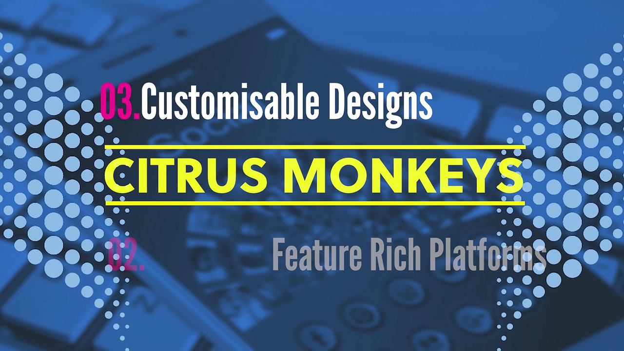 Citrus Monkeys Business Solutions