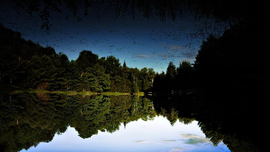 Woodstream