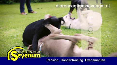 Dierencentrum Sevenum