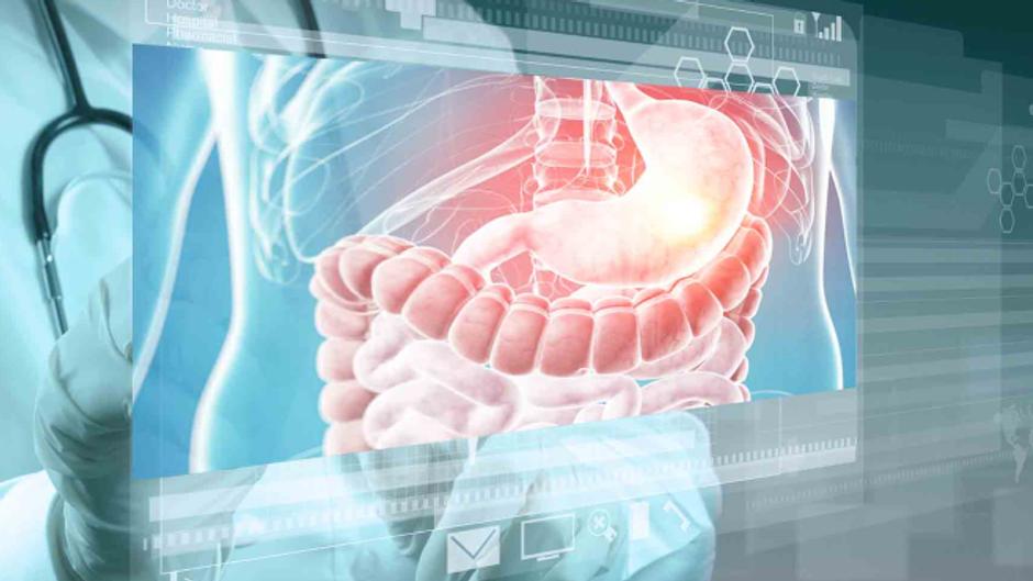 Curso Introdutório e Interativo de Diagnóstico por Imagem em Gastroenterologia