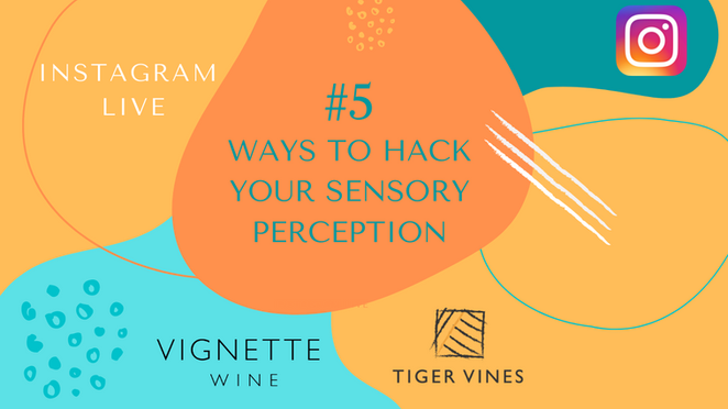 5 Ways to Hack Your Sensory Perception