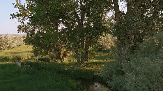Esponda Ranch