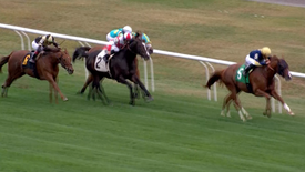 RED RIGHT HAND WINS AT BELMONT: 10.16.19