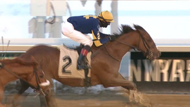 GRIT AND GLORY WINS AT AQUEDUCT: 02.21.21