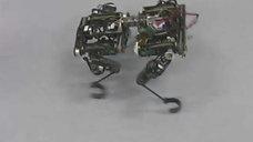 iC-MH를 적용한 독일 로봇(DKFI)