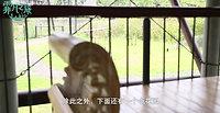 霏凡之旅-LALA MUKHA-EP1