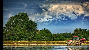 Baraggia