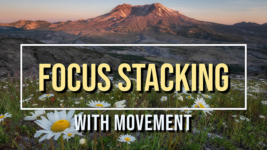 Focus stacking with movement