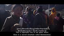 Abandoned Tibetan mastiffs