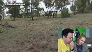 Australian Kagaroos