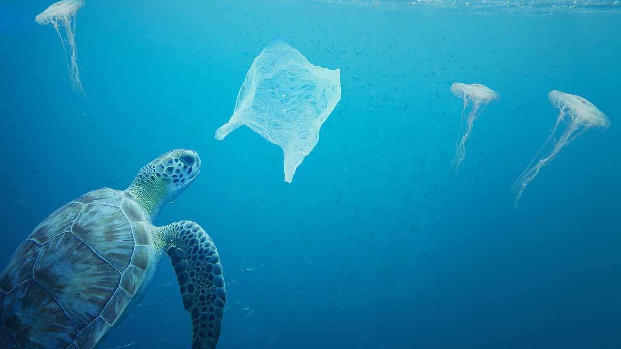 The Power of Clean Planet