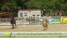 Working Equitation Weltmeisterschaft 2018 München Riem