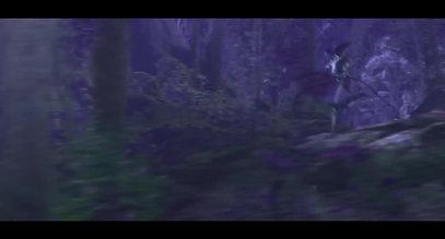 Fiver wow elf