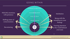 Video 4 - Healing Paradigm Shift