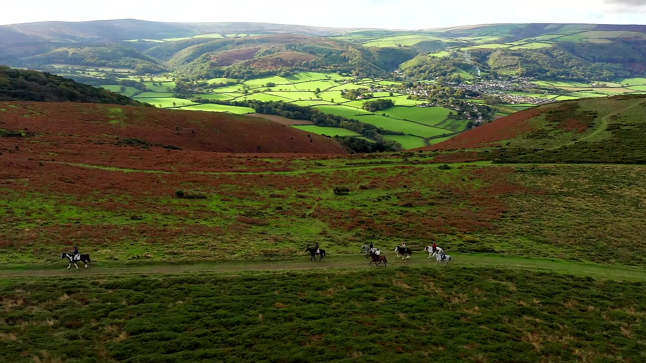 North Hill Ride and Exmoor Ponies