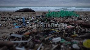 contaminación, plásticos