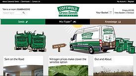 Website Advertisement