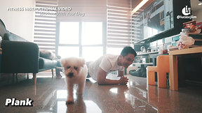 Workout With Your Dog