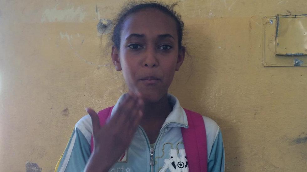 Visual Amharic