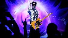 Prince Quick Mix