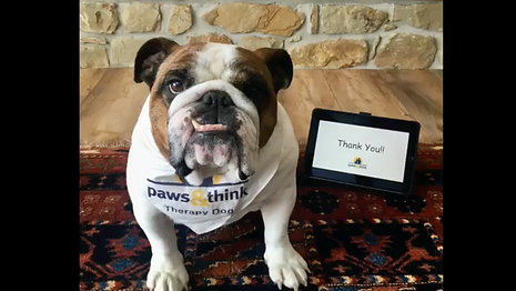 "Therapy dogs say ""Thank You"""