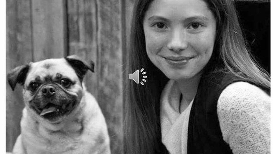 Capsules informatives sur le comportement et l'éducation du chien - Ressources et conseils professionnels