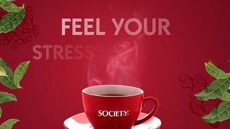 Masala Tea | Society Tea