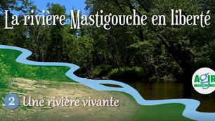 Capsule 2 - Une rivière vivante